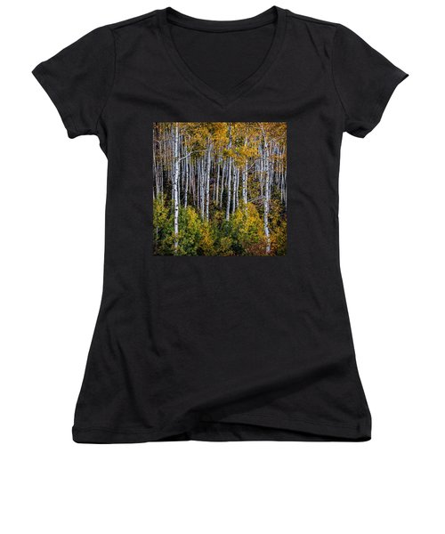 Women's V-Neck T-Shirt (Junior Cut) featuring the photograph Autumn On Mcclure Pass by Ken Smith