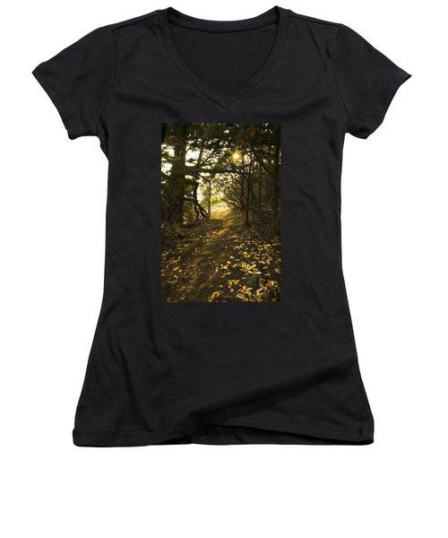 Autumn Trail In Woods Women's V-Neck