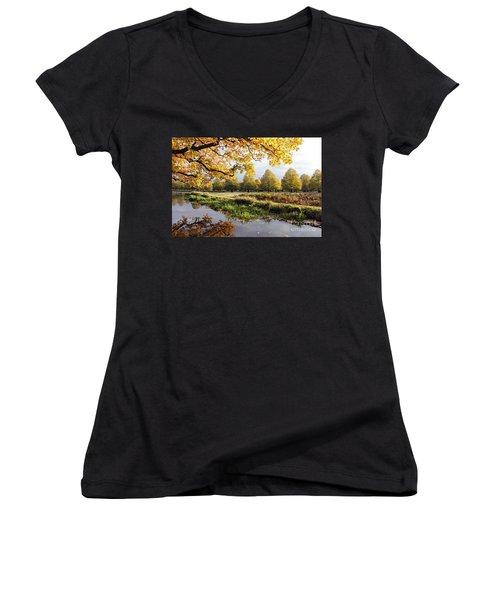Autumn Trees Women's V-Neck