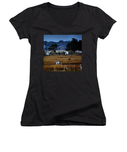 Aviary Convention Women's V-Neck (Athletic Fit)