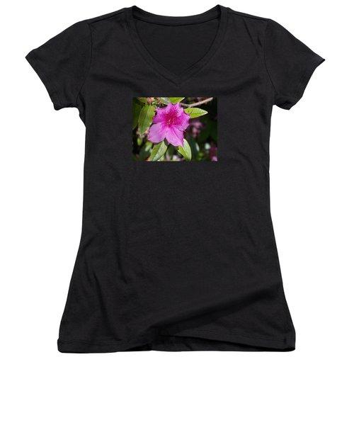 Azalea Women's V-Neck T-Shirt