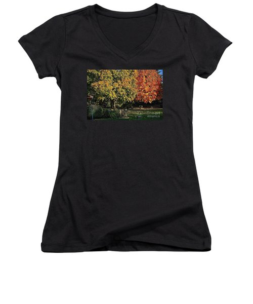 Backyard Morning In The Fall Women's V-Neck (Athletic Fit)