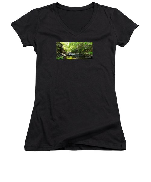 Bald River Women's V-Neck T-Shirt (Junior Cut) by Paul Mashburn