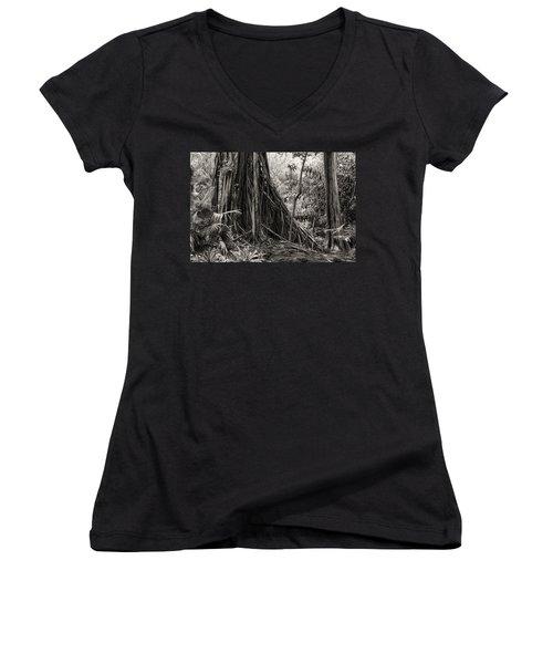 Strangler Fig And Cypress Tree Women's V-Neck