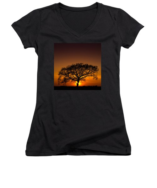 Baobab Women's V-Neck T-Shirt