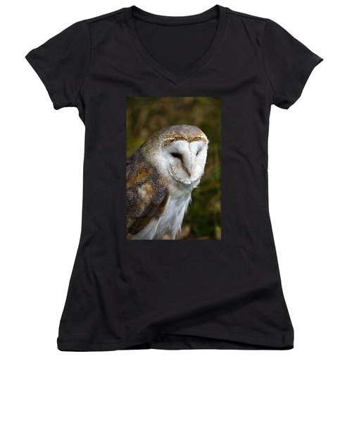 Barn Owl Women's V-Neck T-Shirt