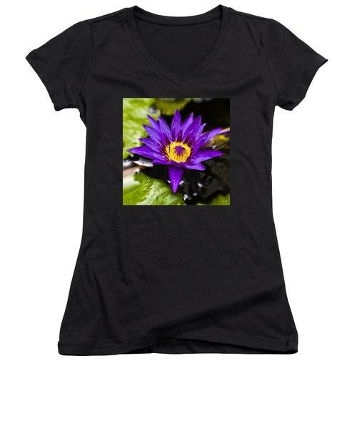 Bayou Beauty Women's V-Neck T-Shirt (Junior Cut) by Scott Pellegrin