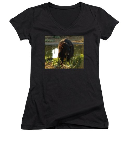 Bear 1 Women's V-Neck (Athletic Fit)
