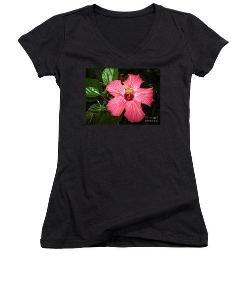 Beautiful Hibiscus Women's V-Neck