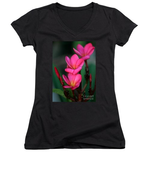 Beautiful Red Plumeria Women's V-Neck T-Shirt