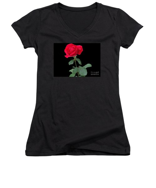 Beautiful Red Rose Women's V-Neck T-Shirt (Junior Cut) by Janette Boyd