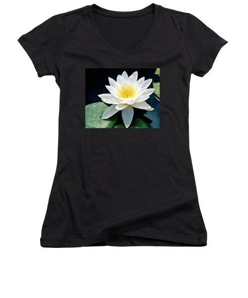 Beautiful Water Lily Capture Women's V-Neck (Athletic Fit)