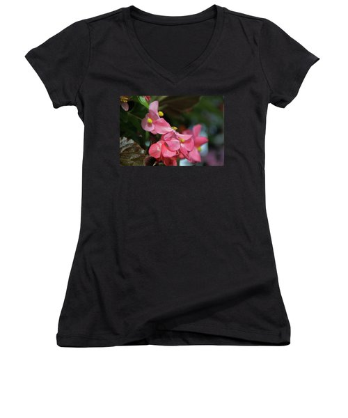 Begonia Beauty Women's V-Neck T-Shirt (Junior Cut) by Ed  Riche