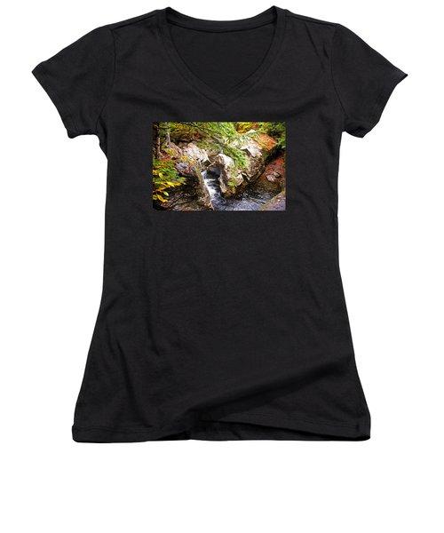 Beside The Water Women's V-Neck T-Shirt (Junior Cut) by Bill Howard
