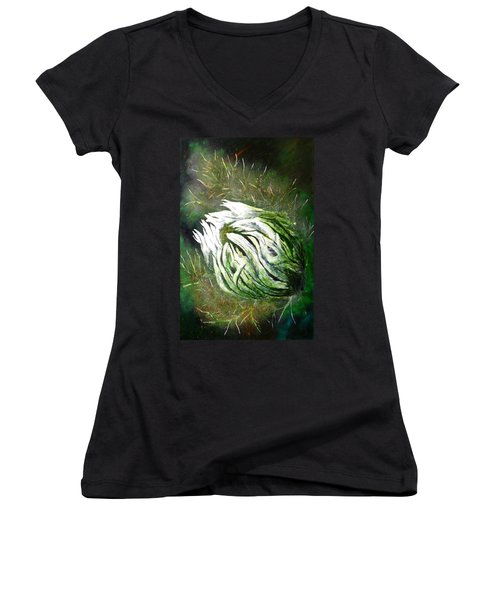 Beware Of The Thorns Women's V-Neck T-Shirt