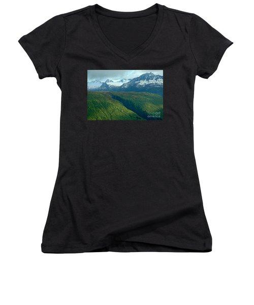 Beyond Description Women's V-Neck T-Shirt (Junior Cut) by Nick  Boren