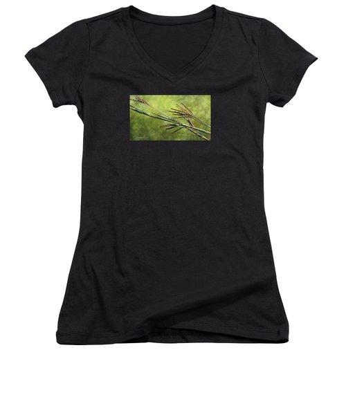 Big Bluestem In Bloom Women's V-Neck T-Shirt (Junior Cut) by Bruce Morrison