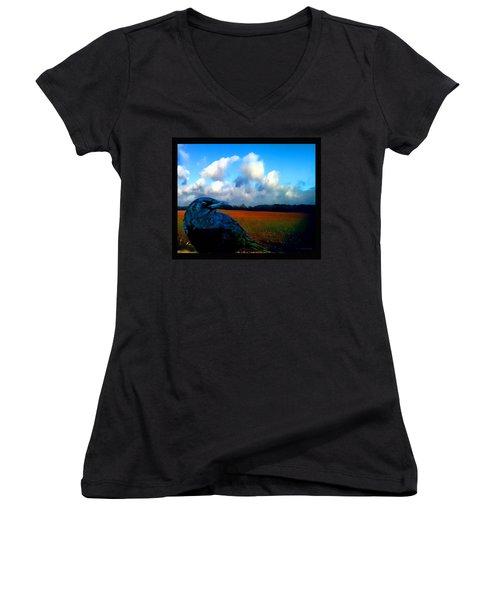 Big Daddy Crow Series Silent Watcher Women's V-Neck T-Shirt (Junior Cut) by Lesa Fine