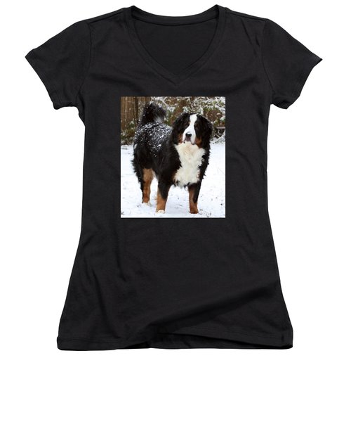Snow Happy Women's V-Neck T-Shirt (Junior Cut) by Patti Whitten