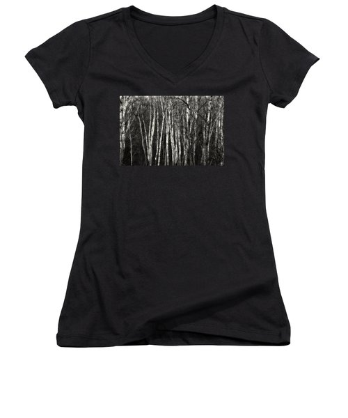 Birches Women's V-Neck (Athletic Fit)