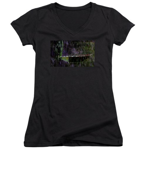 Bird Bath Explosion Women's V-Neck