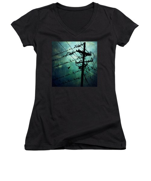 Bird City Women's V-Neck