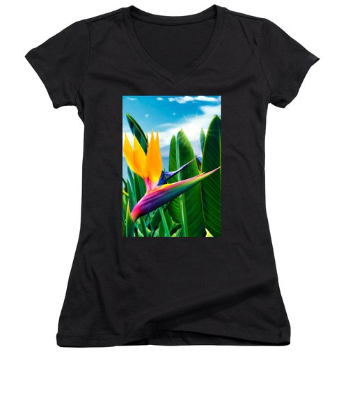 Bird Of Paradise 5 Women's V-Neck T-Shirt (Junior Cut) by Dawn Eshelman