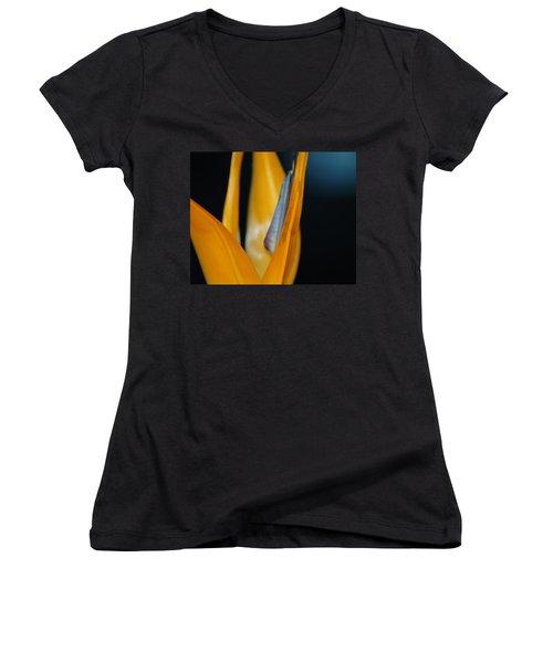 Birds Of Paradise Women's V-Neck T-Shirt (Junior Cut) by Matt Harang