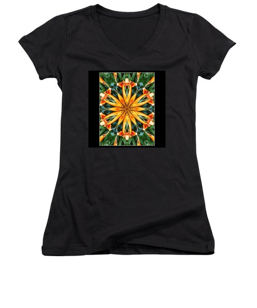 Birthday Lily For Erin Women's V-Neck T-Shirt (Junior Cut) by Nick Heap