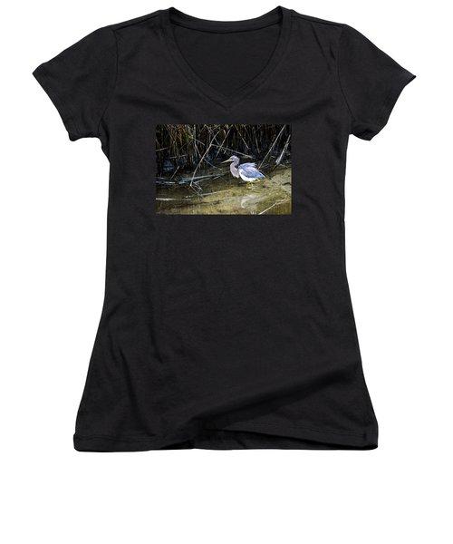 Bittern At Dusk  Women's V-Neck T-Shirt