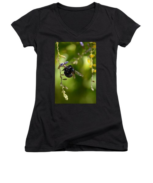 Black Bumblebee Women's V-Neck T-Shirt (Junior Cut) by Debra Martz