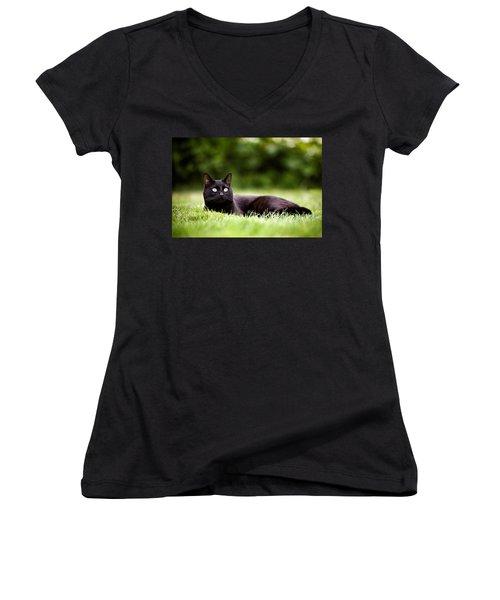 Black Cat Lying In Garden Women's V-Neck
