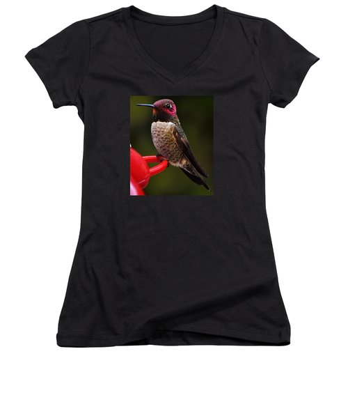 Women's V-Neck T-Shirt (Junior Cut) featuring the photograph Black Chinned Male Hummingbird by Jay Milo