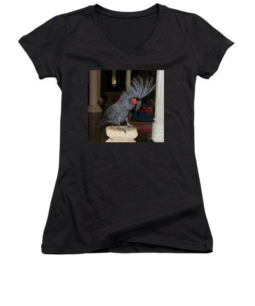 Women's V-Neck T-Shirt (Junior Cut) featuring the photograph Black Palm Cockatoo by Sergey Lukashin