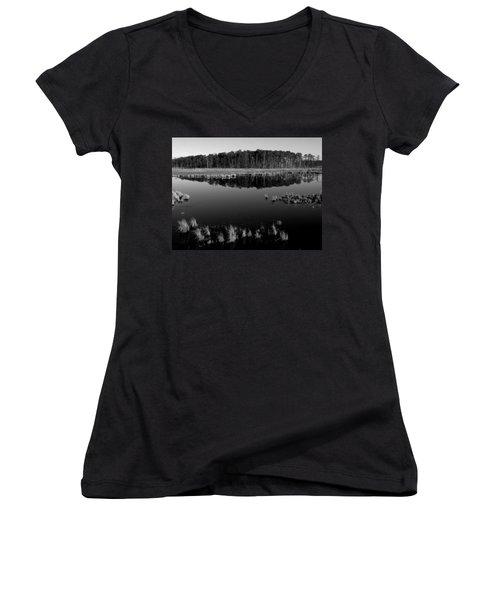 Blackwater  Women's V-Neck T-Shirt (Junior Cut) by Robert Geary