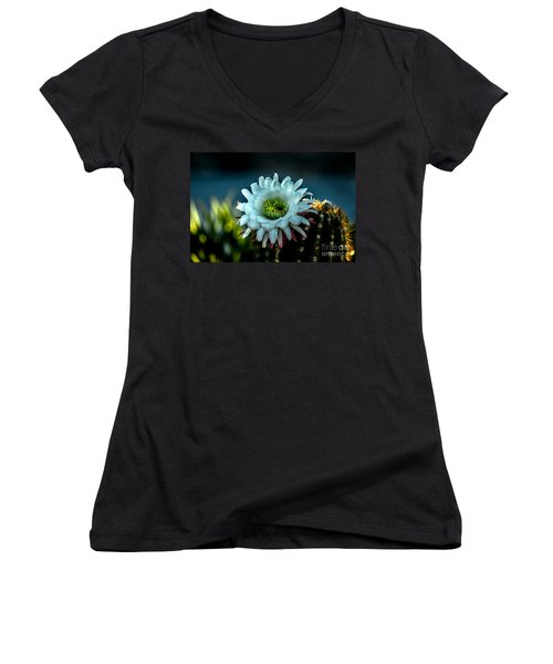 Blooming Argentine Giant Women's V-Neck T-Shirt (Junior Cut) by Robert Bales