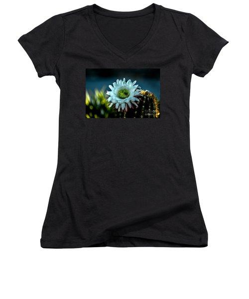 Blooming Argentine Giant Women's V-Neck T-Shirt