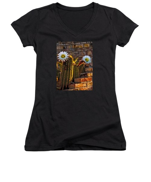 Blooming Cactus Women's V-Neck T-Shirt
