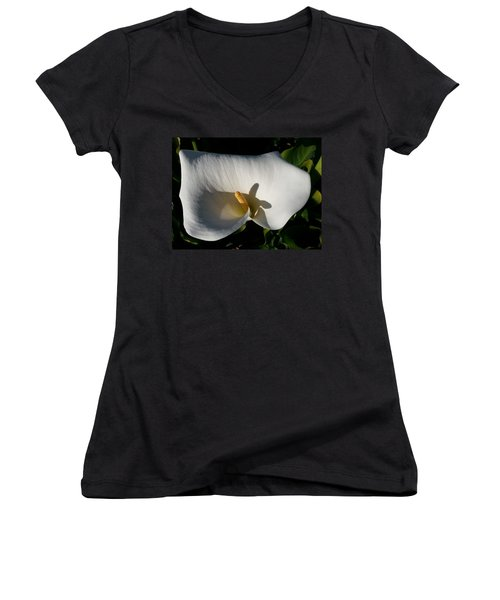 Blooming Lily Of San Francisco Women's V-Neck T-Shirt (Junior Cut) by Emmy Marie Vickers