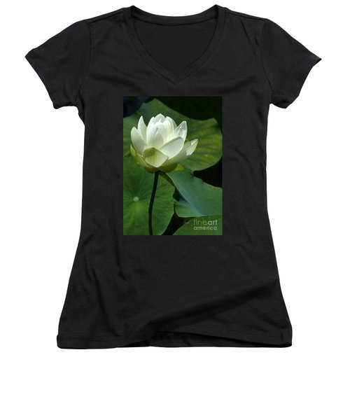 Blooming White Lotus Women's V-Neck
