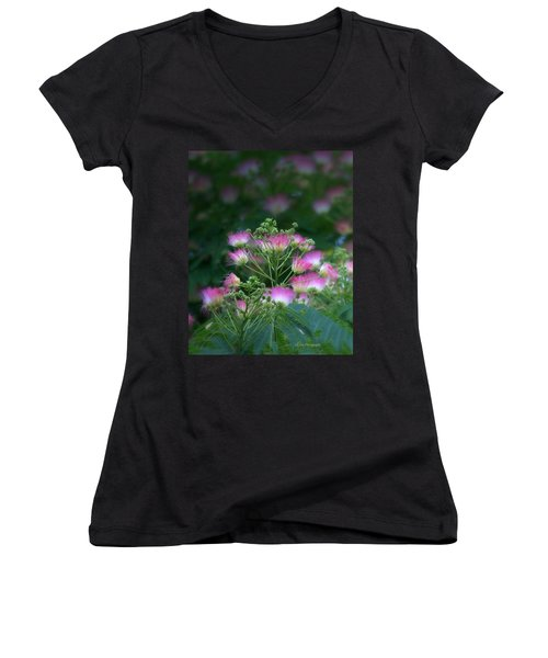 Blooms Of The Mimosa Tree Women's V-Neck T-Shirt