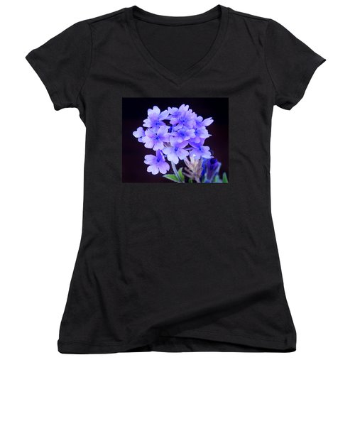 Verbena Women's V-Neck