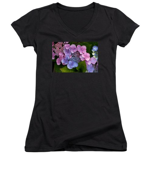 Blueberries And Cream Women's V-Neck T-Shirt (Junior Cut) by Living Color Photography Lorraine Lynch