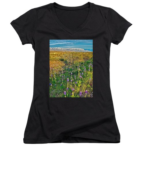 Bluebonnets And Creosote Bushes In Big Bend National Park-texas Women's V-Neck T-Shirt