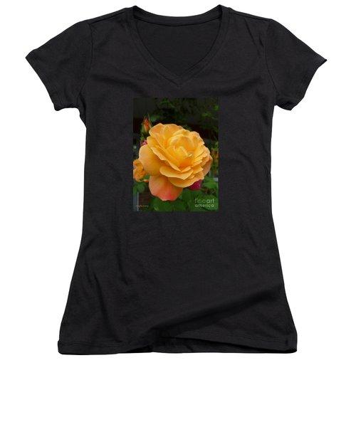 Women's V-Neck T-Shirt (Junior Cut) featuring the photograph Blushing Rosalina by Lingfai Leung