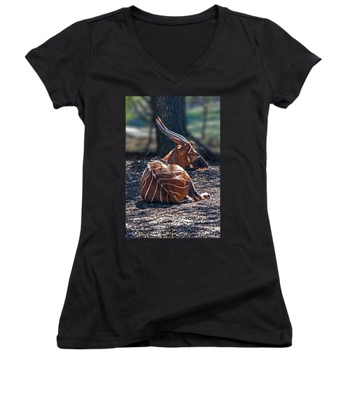 Bongo Women's V-Neck T-Shirt