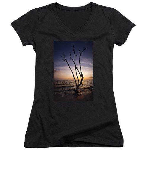 Bonita Beach Tree Women's V-Neck T-Shirt (Junior Cut) by Bradley R Youngberg