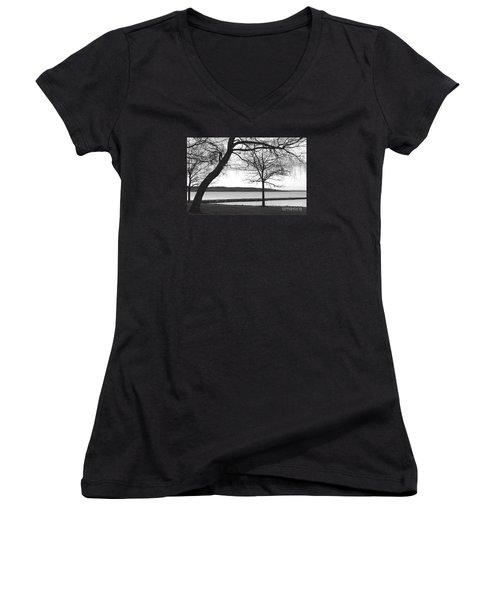 Borrestranda Women's V-Neck T-Shirt (Junior Cut) by Randi Grace Nilsberg