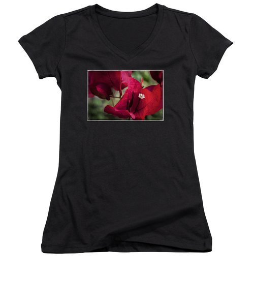 Women's V-Neck T-Shirt featuring the photograph Bougainvillea by Steven Sparks
