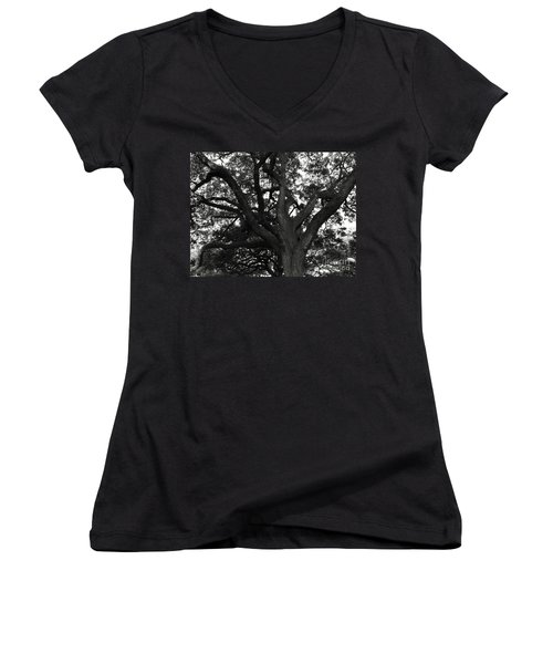 Branches Of Life Women's V-Neck